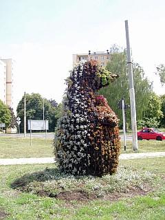 Kwietnik w kształcie jeża u zbiegu ulic 1-go Maja i Łódzkiej na Kuraku (foto2)