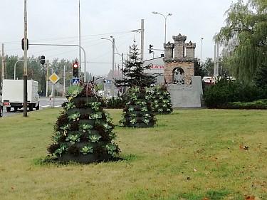 Kwietniki na Kuraku przy Herbie (foto1)