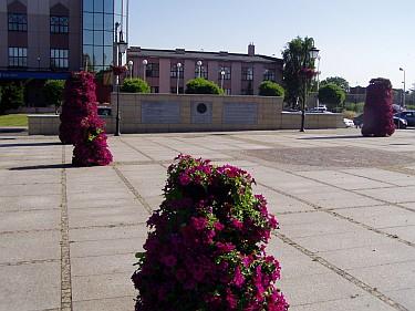 Kwietniki na pl. Kilińskiego (foto2)