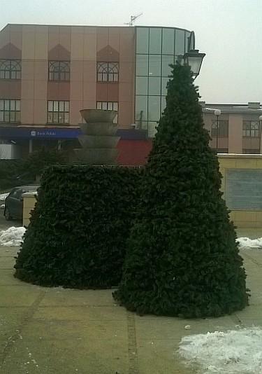 Demontaż choinek na Placu Kilińskiego (foto1)