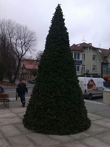 Plac Kilińskiego - dekoracje świąteczne (foto2)