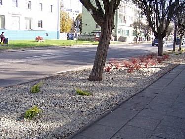 Rabaty - ul.Długa - dalsze prace (foto1)