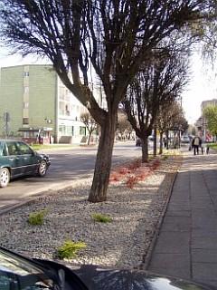 Rabaty - ul.Długa - dalsze prace (foto4)